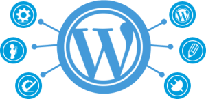 Custom-Wordpress-Development-300x145